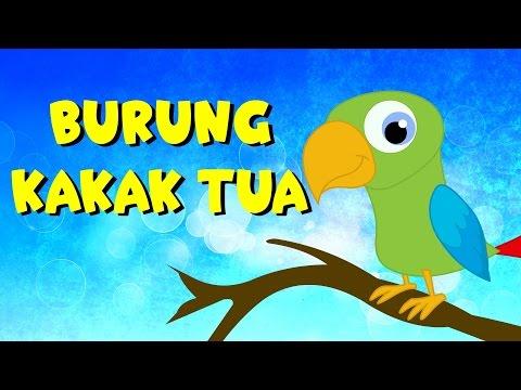 Burung kakak tua   Kumpulan   Lagu Anak TV