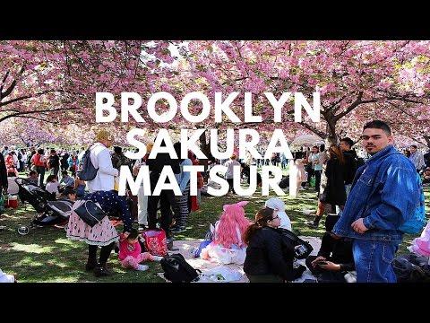 Brooklyn Botanic Garden Sakura Matsuri Highlight