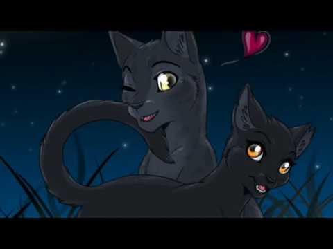Top Ten Most Underrated Warrior Cat Couples