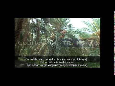 "Khazanah Trans7 ""Untaian Hikmah Surah Ar Rahman"" 18 Februari 2015"