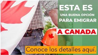 NO NECESITAS OFERTA LABORAL PARA EMIGRAR A ESTA PROVINCIA CANADIENSE.