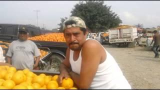 segundo dia de paro de naranja thumbnail