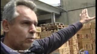 Perchè alcuni capannoni sono caduti e altri no ? Terremoto Emilia Romagna