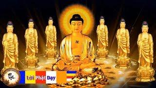 Nhạc Phật Giáo - Nhạc Niệm Phật Không Lời - Nhạc Thiền Tịnh Tâm nghe mỗi tối nhẹ lòng