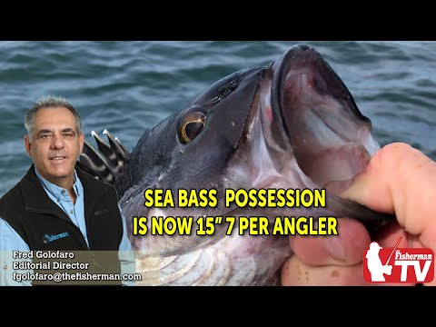 September 3, 2020 Long Island Fishing Report And Forecast With Fred Golofaro