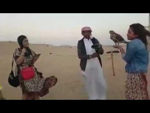 Desert Safari Dubai & UAE Travel & Tourism