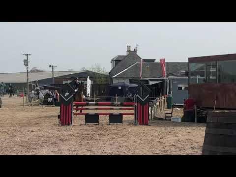 Kailee Franko Andrew Hamilton Novice Highland Q 20/4/19