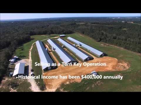 Five Points Poultry Farm, Dale County, Al