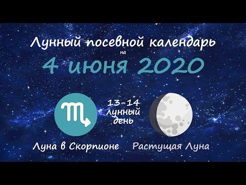 [4 июня 2020] Лунный посевной календарь огородника-садовода