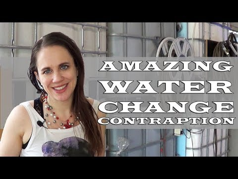 The Amazing Water Change Contraption & How It Saved Me THOUSANDS Of $$$