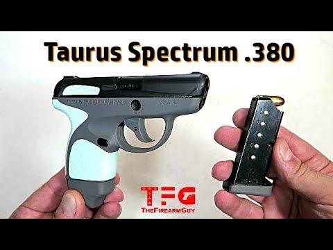 Taurus Spectrum  380 ACP Review - TheFireArmGuy