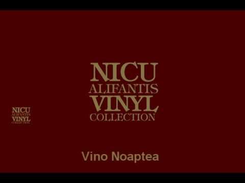 Nicu Alifantis  -  Vino noaptea