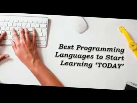 What's PrOgrammers Company