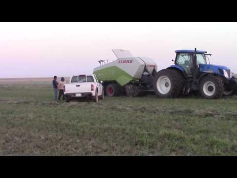 NADEC FARM HAIL PROJECT SAUDI ARABIA