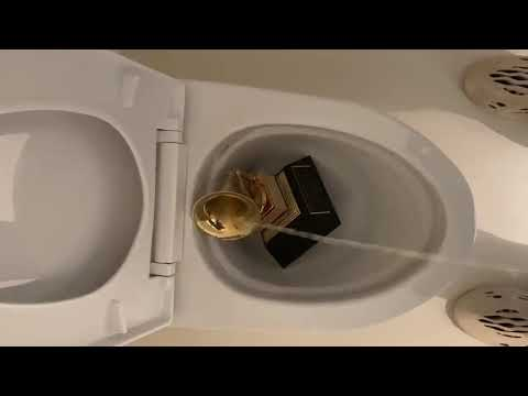 Kanye West PISSING on his Grammy award in the toilet