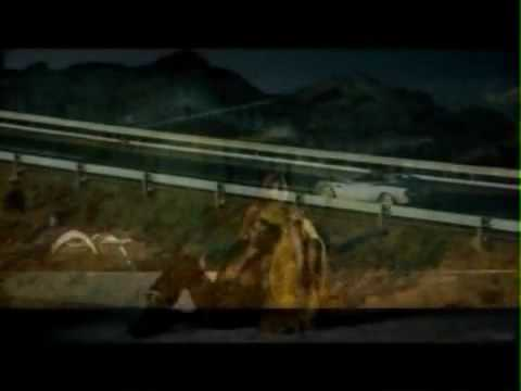 Beyonce Hello (Official Music Video 2009).flv