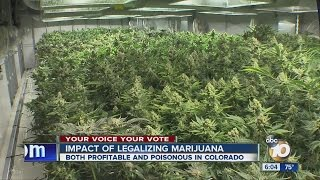 10News examines impact of legalized marijuana