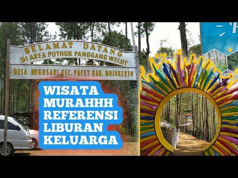 wisata-puthuk-panggang-welut-mojosari-desa-nogosari-kecamatan-pacet-kab-mojokerto