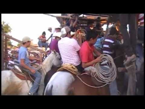 The Bull That Killed One Hundred Horses Part 1 of 8