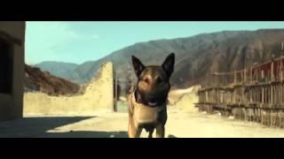 film Max  complet en francais