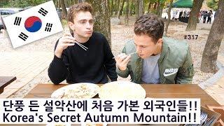 단풍 든 설악산에 처음 가본 외국인들!! (317/365)  Korea's Secret Autumn Mountain!!