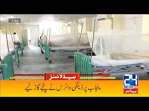 Dengue Out Of Control... Breaking News