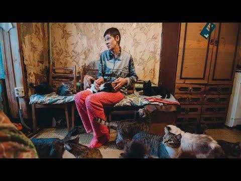 В Тюмени женщина приютила 120 котов   72.ru