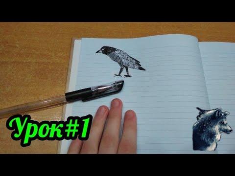 Урок#1 Рисуем миниатюру грача гелиевой ручкой