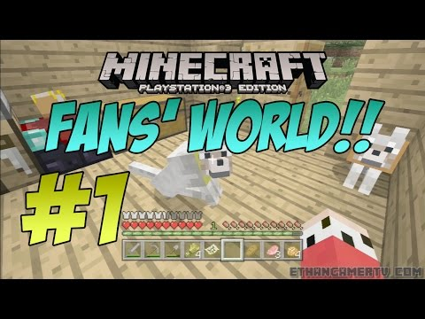 EthanGamerTV Fans' Minecraft World!! #1