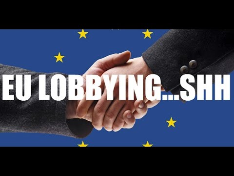 EU REFERENDUM-The Truth About The European Union- Who Runs Brussels?