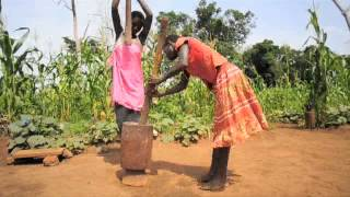 Rice: Planting Season in South Sudan