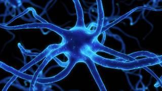 Cosmic Warrior - Neurotransmitter Malfunction