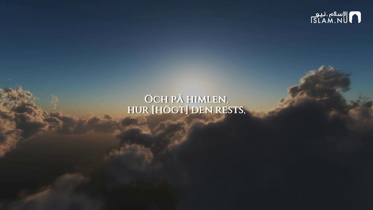 Surah Al-Ghashiyah - Omar Hisham