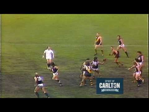Wayne Johnston 1984 - Carlton Football Club Past Player