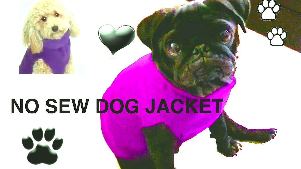 NO SEW DOG JACKET - DIY Dog clothes - a tutorial by Cooking For Dogs ...