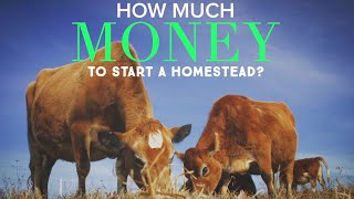 HOW MUCH MONEY do you need TO START HOMESTEADING?