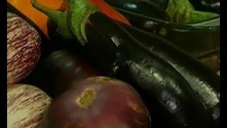 Выращивание и консервация баклажанов - Удачный проект - Интер