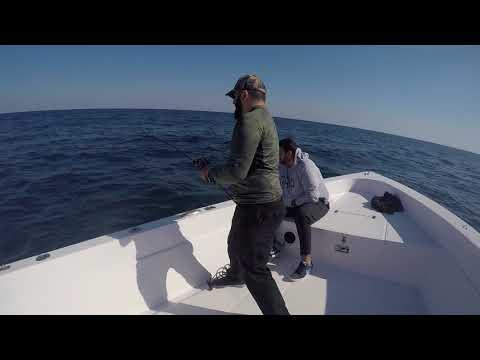 Fishing trip 20-12-17 Arabia sea (Kalba) 3 of 13