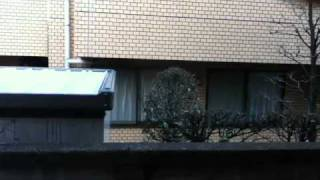 2011/03/11 Japan Earthquake Tokyo Amateur Footage