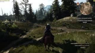The Witcher 3. Вражеская лошадь