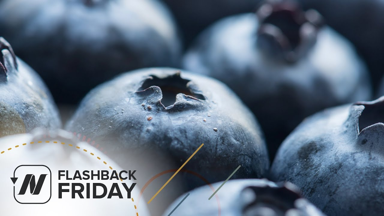 Flashback Friday: Benefits of Blueberries for Heart Disease