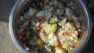HOW TO MAKE Veg Diet For your Pet    Best Home Food Diet For Your  Pet   Healthy Diet    Scoobers