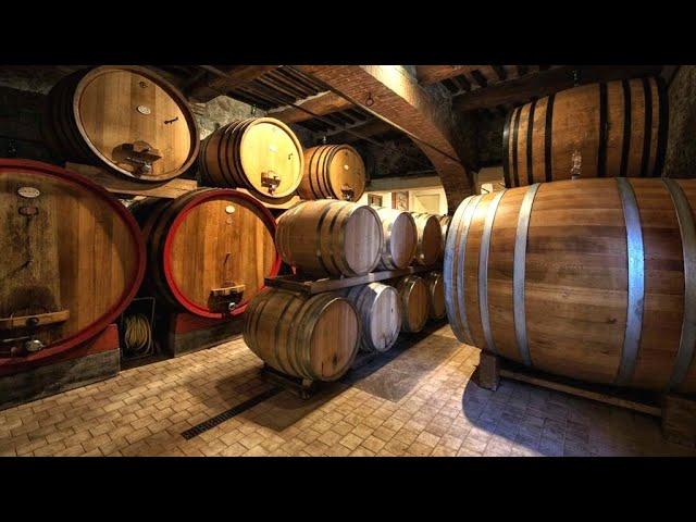 Casato Prime Donne and Fattoria del Colle wineries in Tuscany