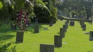 The Nancy Hart Militia - Fort Tyler Cemetery