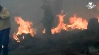 Sin control, incendio en bosque de Jalisco