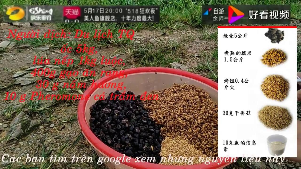 Đây là cách làm mồi câu cá trắm đen của người Trung Quốc!