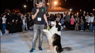 معقوله الكلاب تفهم عربي وانجليزي !! 😲 شوفوا كلبي🙀