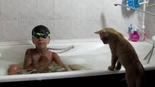 Когда коты не боятся воды.