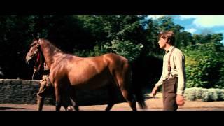 Боевой конь  - Трейлер