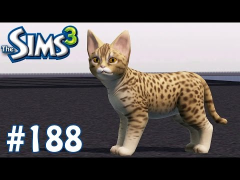 The Sims 3: New Feline Friend - Part 188